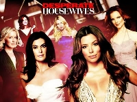 Desperate Housewives Season 6 (จบ)